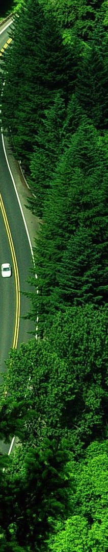 Highway-Green-Trees