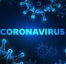 verhuizen eduard strang coronavirus